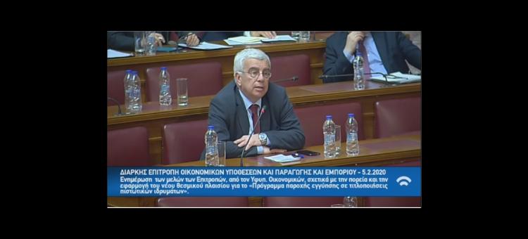 Παρέμβασή μου στη Βουλή στη συζήτηση για το νόμο «Ηρακλής» για τα κόκκινα δάνεια.